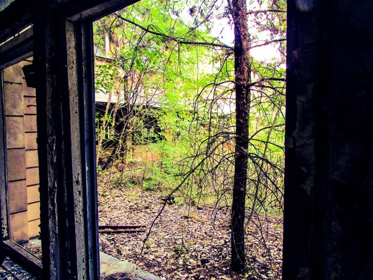Utsikt fra et av vinduene.
