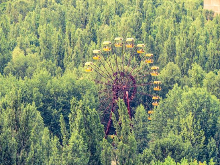 Pariserhjulet rager opp av det grønne.
