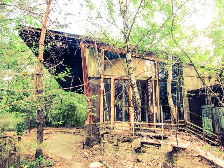 Kafe Pripyats elegante linjer sees fortsatt gjennom løvverket.