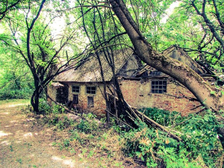 De andre husene i Zalissia har stått tomme i 29 år og bærer tydelig preg av forfall.