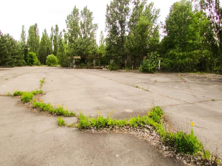 Naturen bryter gjennom asfalten ved fornøyelsesparken.